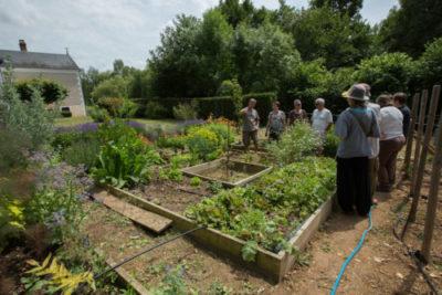 CPIE- participation citoyenne Jardins sans pesticide